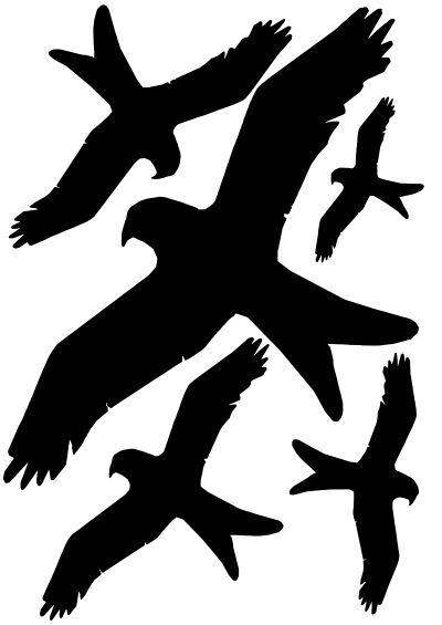 Vogelschutz Fensterschutz Aufkleber Set